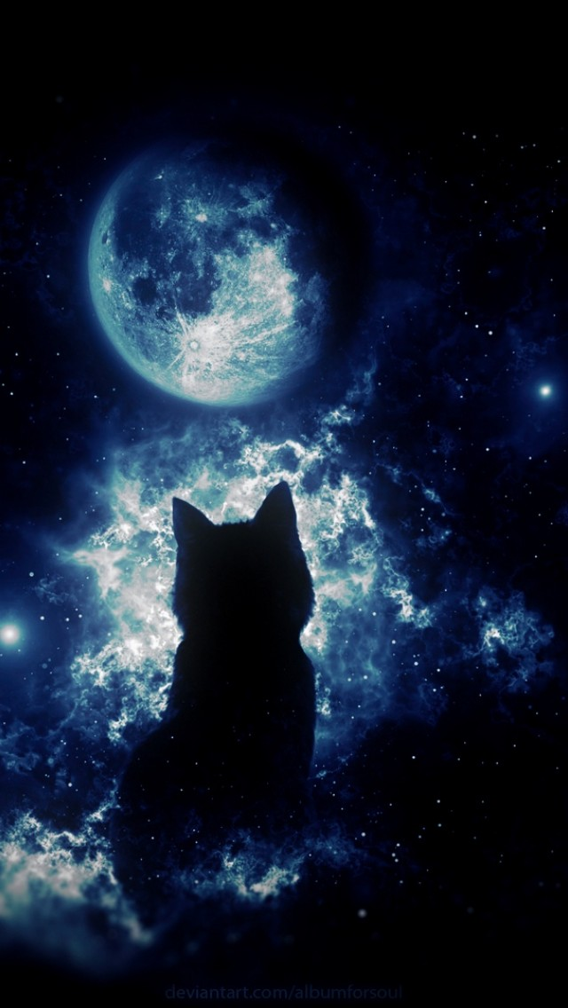 Anime Cat Staring At The Moon Hd Wallpaper Iphone 5 5s Ipod