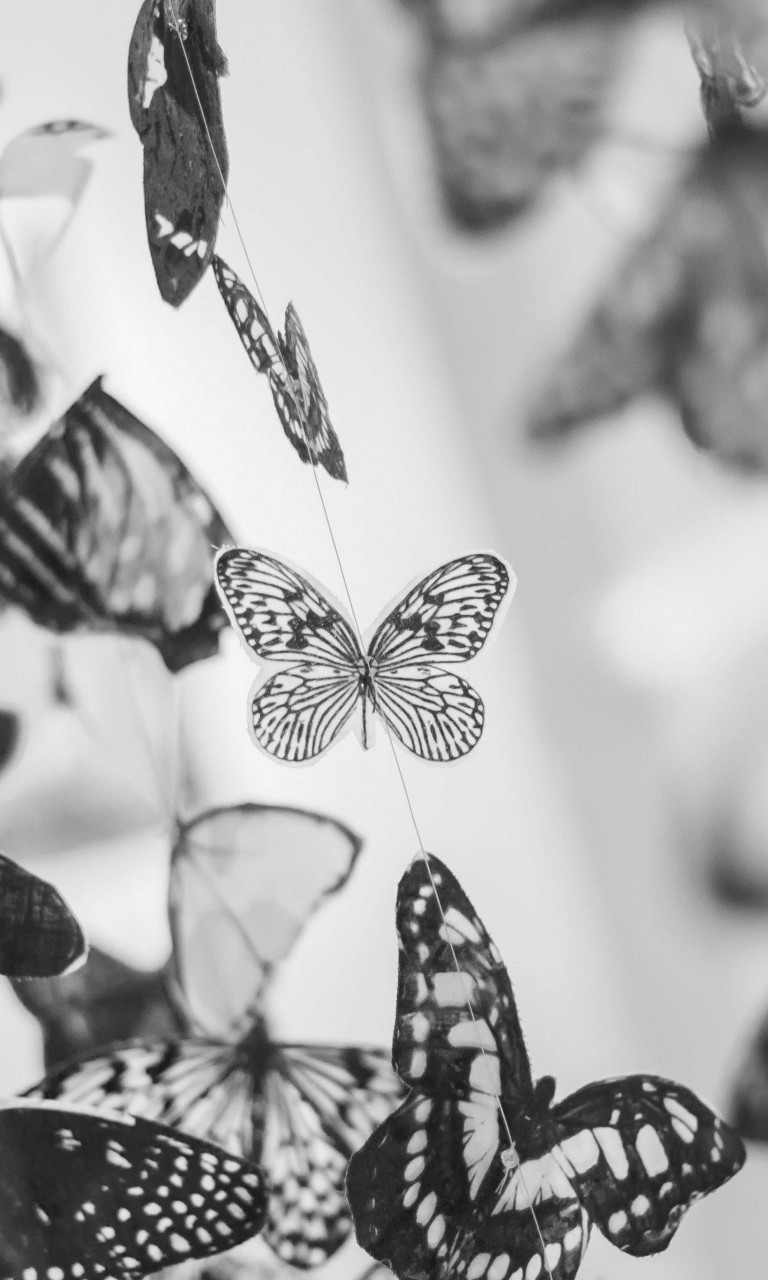 Colorful Beautiful Black And White Butterfly Wallpaper For Desktop And Mobiles 768x1280 Hd Wallpaper Wallpapers Net
