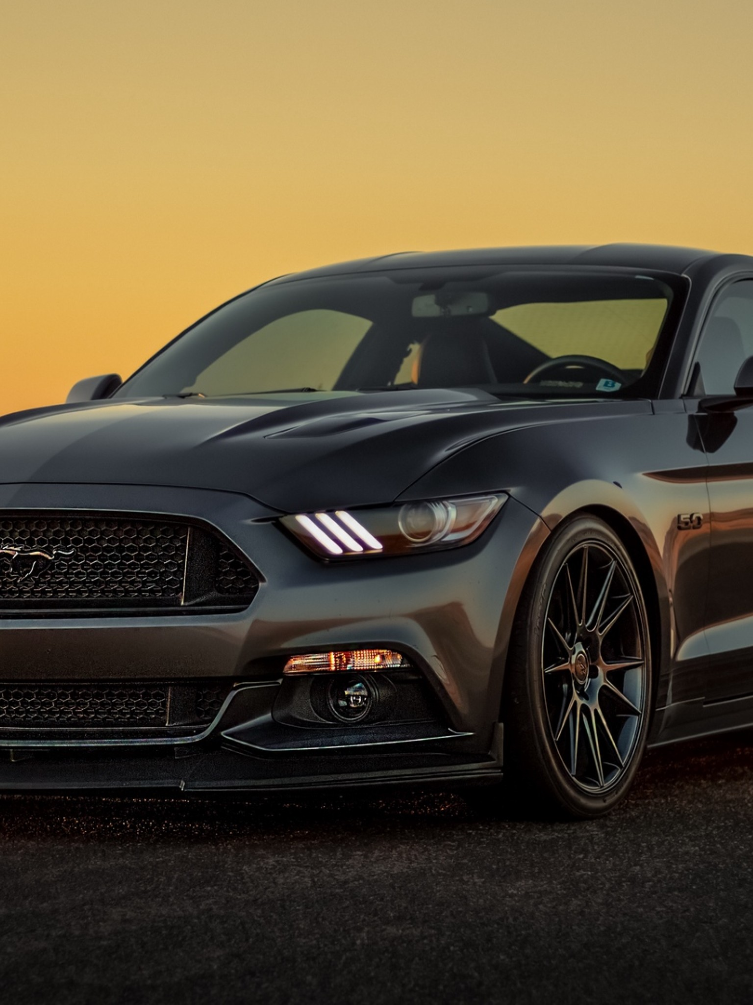 Gray Ford Mustang Hd Wallpaper Available In Different