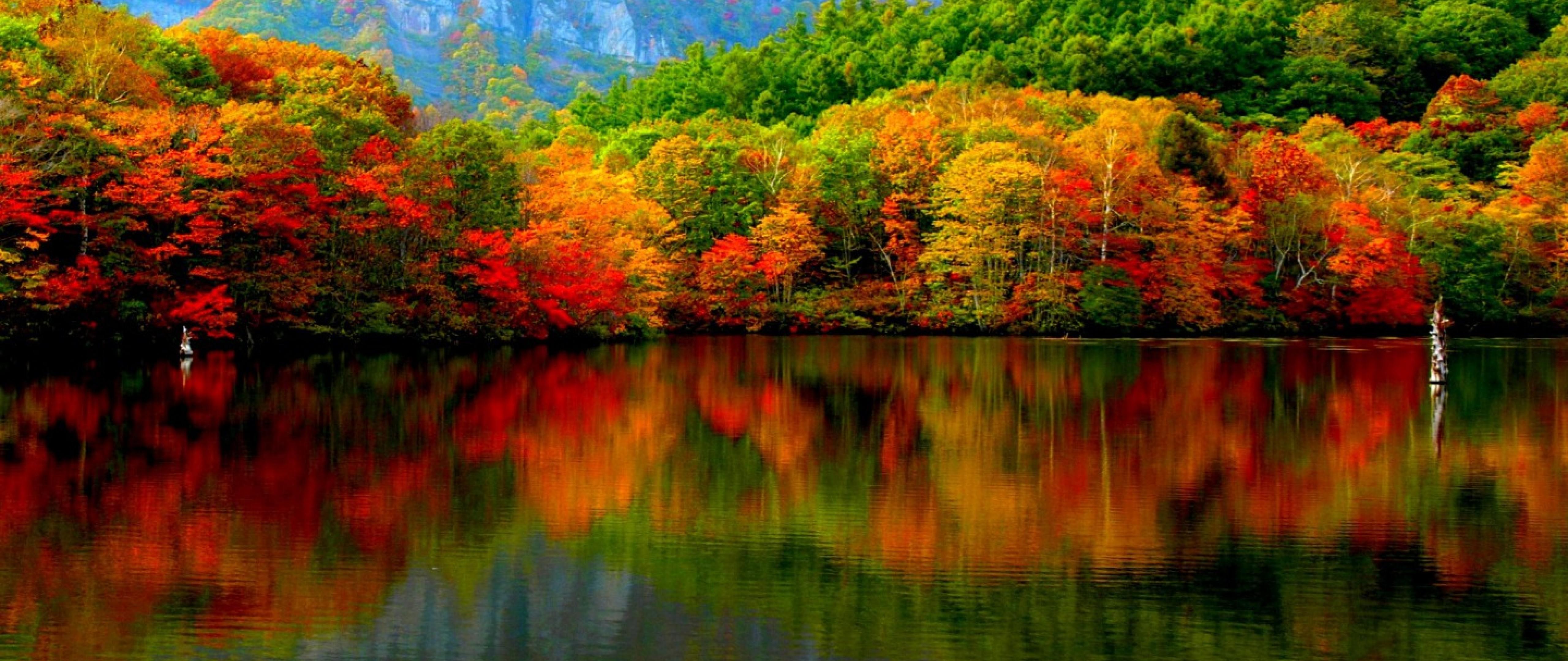 Mountain Autumn Hd Wallpaper 4k Ultra Hd Wide Tv Hd Wallpaper Wallpapers Net