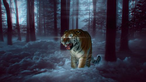 Amazing tiger made in Photoshop HD Wallpaper