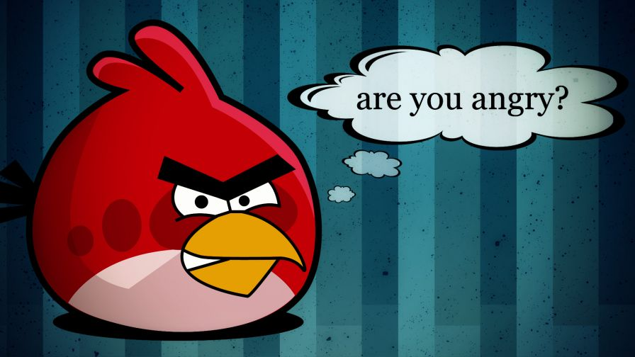 Angry Birds Are You Angry Hd Wallpaper for Desktop and Mobiles
