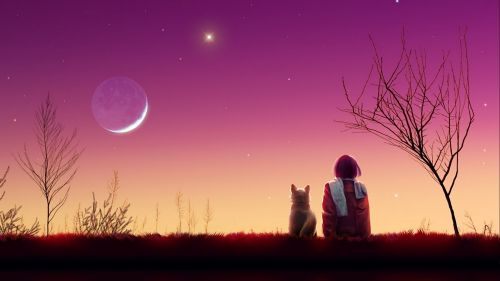 Anime girl watches the sunset with her cat HD Wallpaper