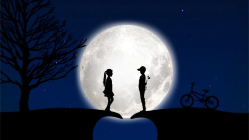 Couple in the light of the moon HD Wallpaper