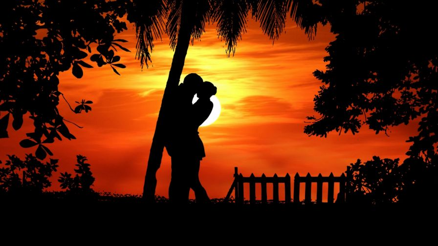 Couple silhouette kissing under a tree HD Wallpaper