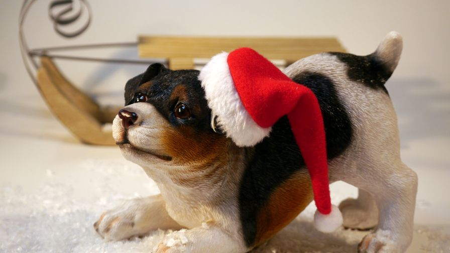 Dog Wearing Santa Hat Figurine HD Wallpaper