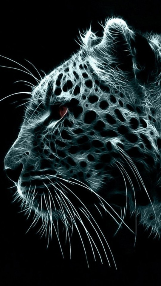Download Free HD Snow Leopard Wallpaper