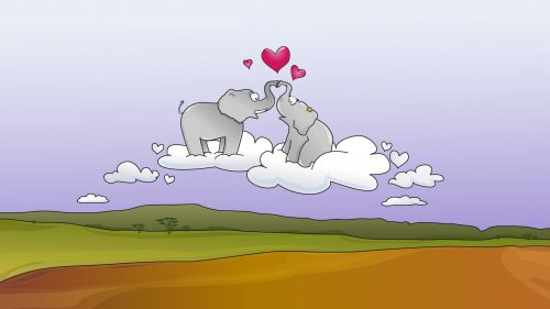 Elephants couple HD Wallpaper