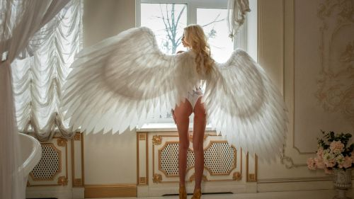 Exotic Angel HD Wallpaper