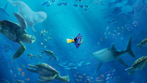 Finding Dory Hd Wallpaper for Desktop and Mobiles
