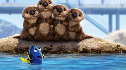 Finding Dory Sea Lion Hd Wallpaper for Desktop and Mobiles
