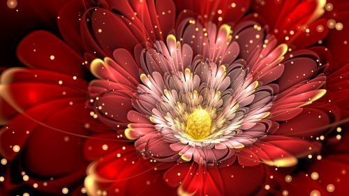 Flower covered in glitter HD Wallpaper