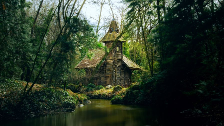 Forest house next to the river HD Wallpaper
