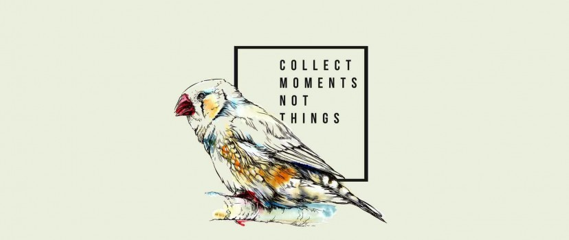Free Collect Moments Not Things Full Hd Wallpaper for Desktop and Mobiles