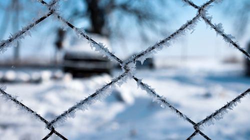 Frost over the fence HD Wallpaper