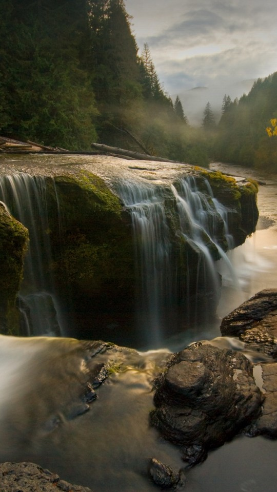 Gifford Pinchot National Forest HD Wallpaper