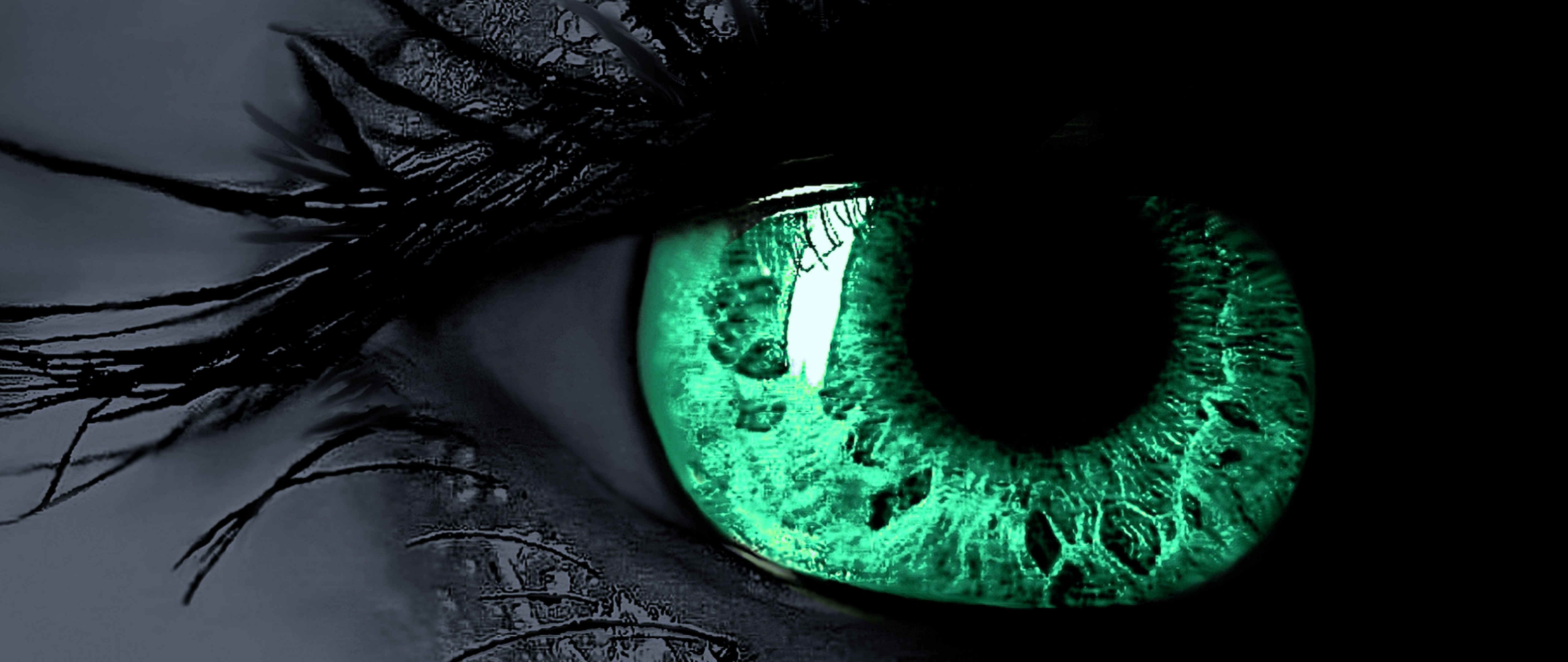 Green Eyes Beautiful Hd Wallpaper for Desktop and Mobiles