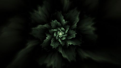 Green fractal pattern HD Wallpaper