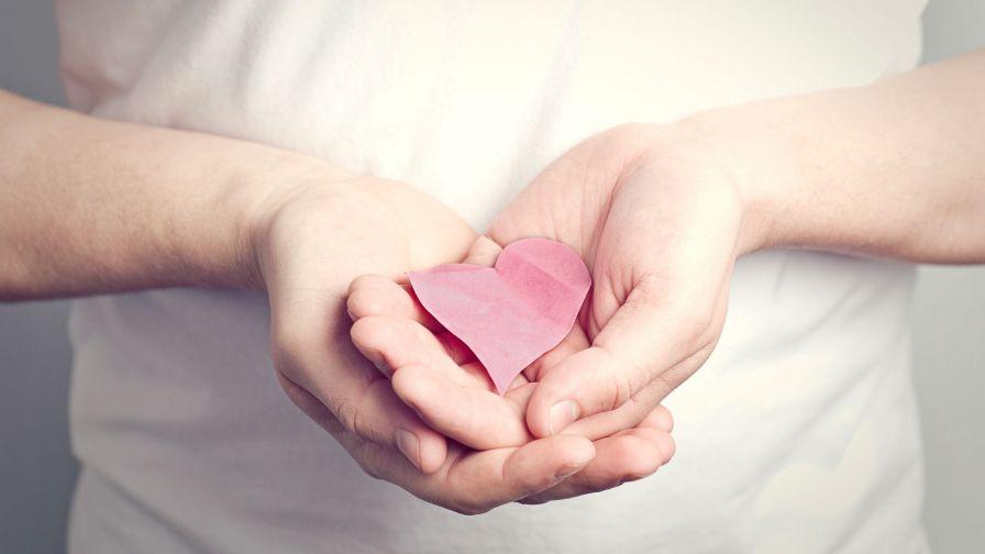Hand With A Pink Heart Hd Wallpaper Wallpapersnet