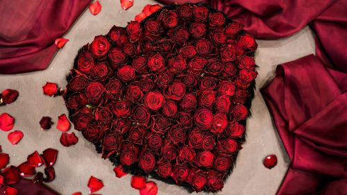 Heart made of red roses HD Wallpaper