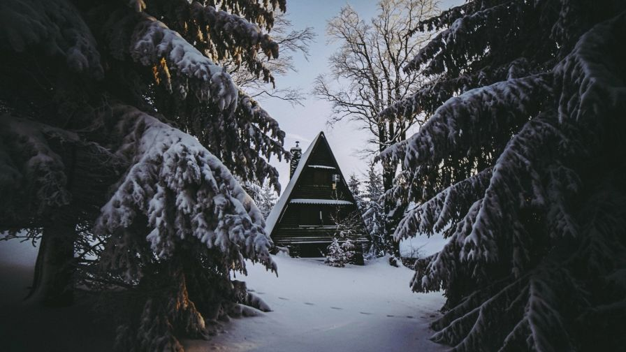 House in the middle of a snowy forest HD Wallpaper