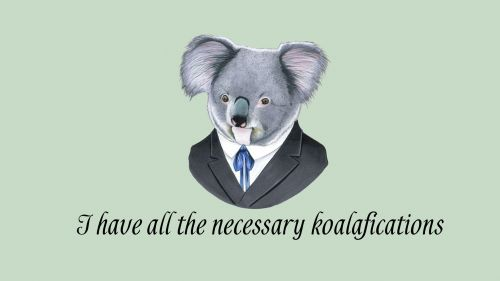 Koalafication HD Wallpaper