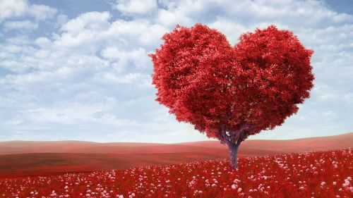 Love Heart Tree Wallpaper for Desktop and Mobiles