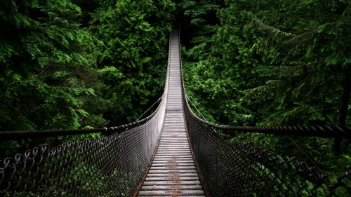 Lynn Canyon Park HD Wallpaper