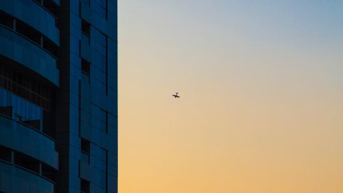 Plane flying next to skyscapers HD Wallpaper