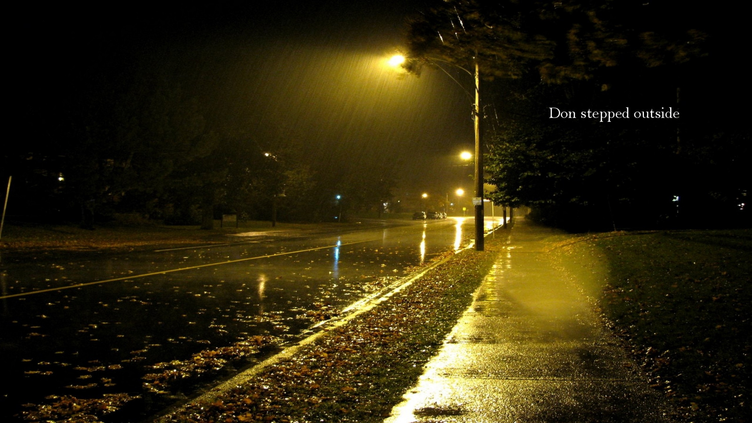 Rainy Street At Night HD Wallpaper