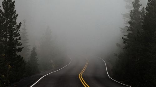 Road covereed in fog HD Wallpaper