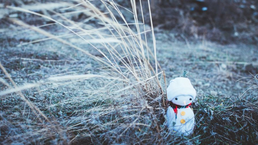 Snowman on the grass HD Wallpaper
