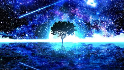 Tree under a starry sky HD Wallpaper