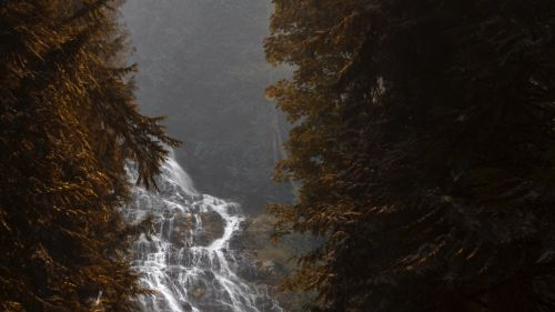 Trees flowing over the waterfall HD Wallpaper