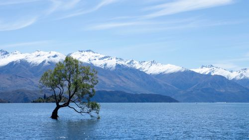 Wanaka lake HD Wallpaper
