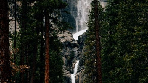 Waterfall flowing through the trees HD Wallpaper