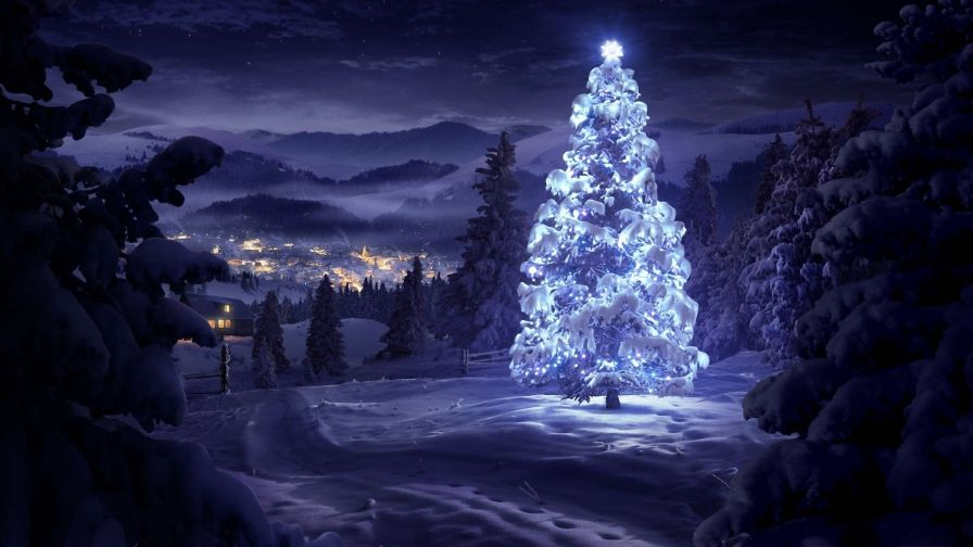 Xmas Tree Covered In Snow Hd Wallpaper Wallpapers Net