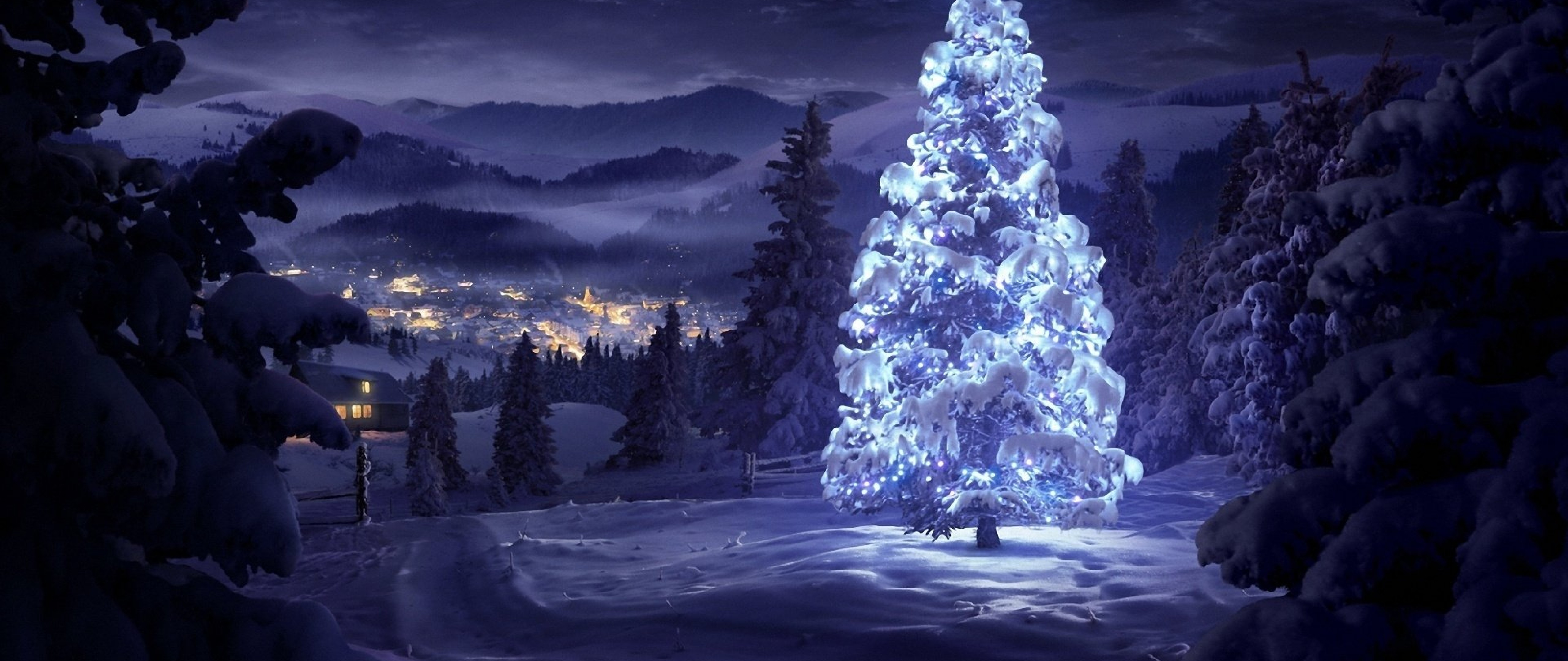 Xmas Tree Covered In Snow Hd Wallpaper 4k Ultra Hd Wide Tv