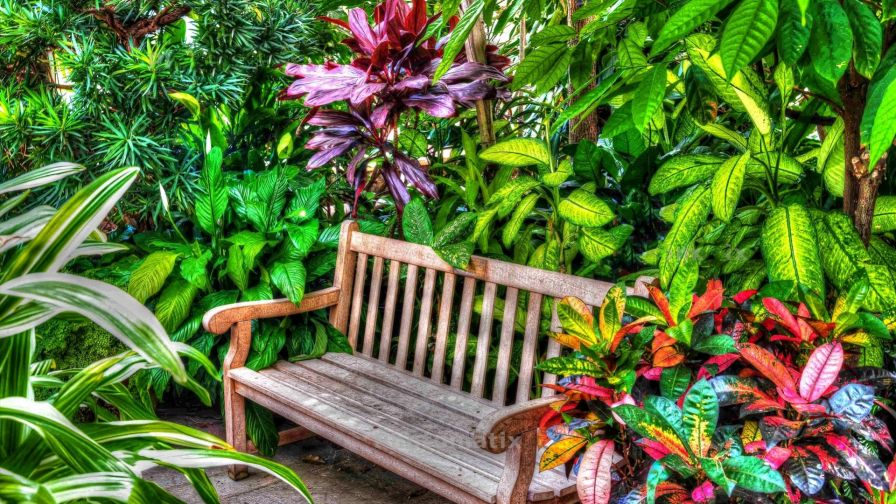 Beautiful Garden Bench HD Wallpaper
