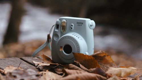 Camera covered by leaves HD Wallpaper
