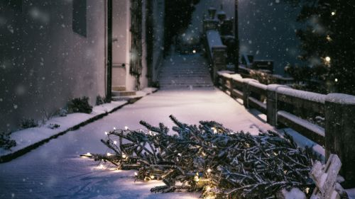 Falling Christmas Tree on Pathway HD Wallpaper