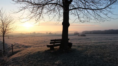 Frosty bench HD Wallpaper