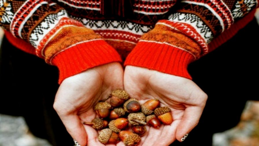Hand Nuts HD Wallpaper