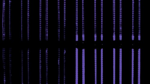 Purple vertical lines HD Wallpaper