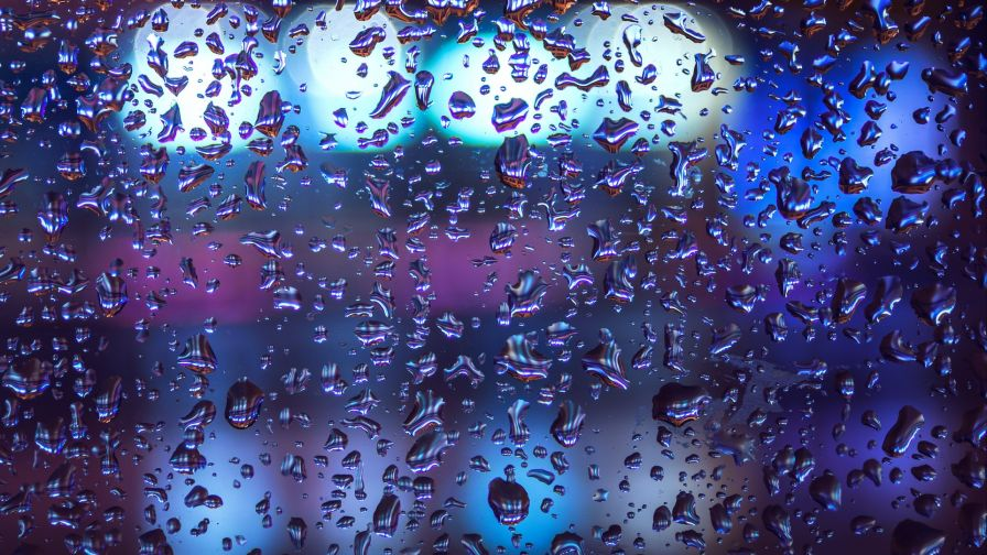 Rain drops macro image HD Wallpaper